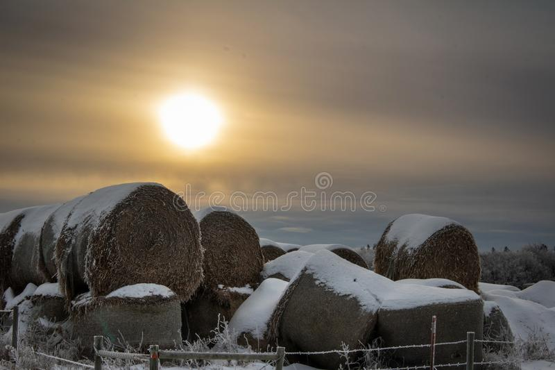 Snow covered stack round bales of hay in a farmers field stock photos