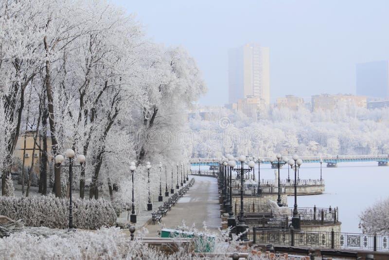 Snow-covered stad met rivier stock fotografie