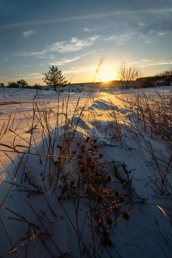 Snow-covered steppe in the rays of sunset winter sun stock photo