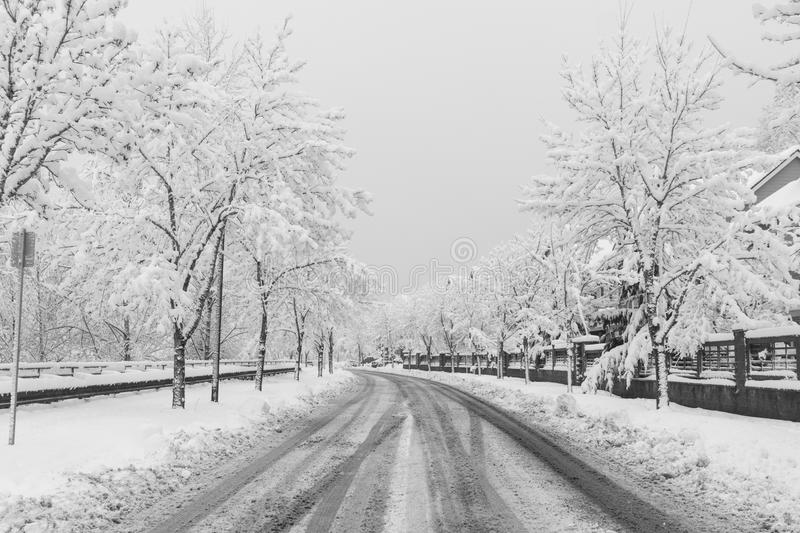 Snow covered suburb street royalty free stock photo