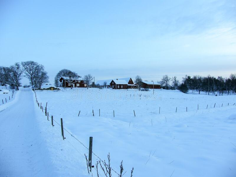 Snow covered Sweden landscape. Snow covered road and fields in rural Sweden landscape royalty free stock image