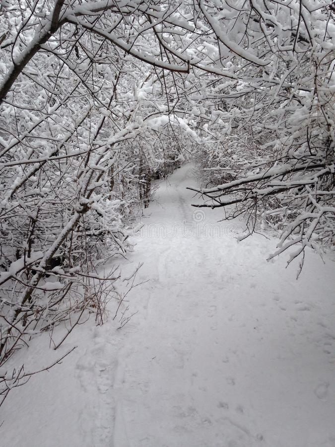 Snow covered trail stock photography