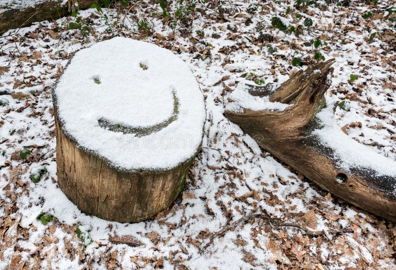 Snow covered tree stump with smiley face emoji. Smiley face emoji drawn on snow covered tree stump royalty free stock images