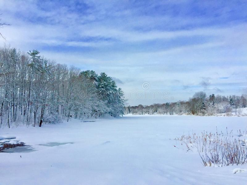 Snow covered trees and river royalty free stock images