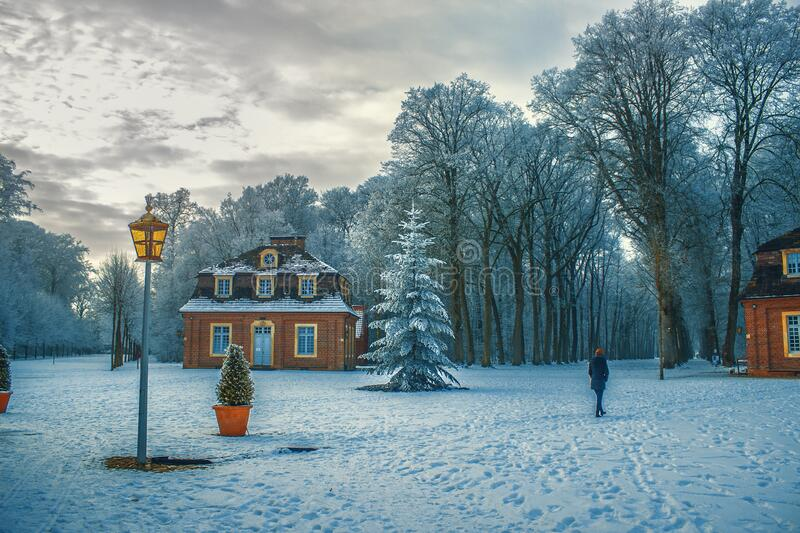 Snow Covered Trees in Winter stock photography