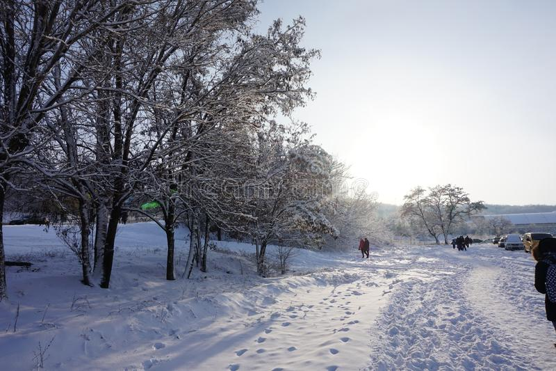 A snow-covered path, along which people walk. stock images