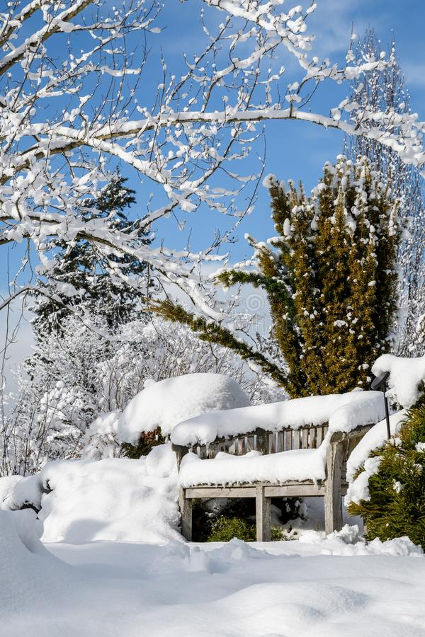 Snow covered wood bench in a snowy winter garden landscape, trees and bushes against a blue sky and white clouds stock images