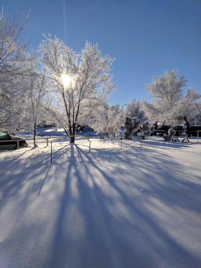 Snow scape royalty free stock photos