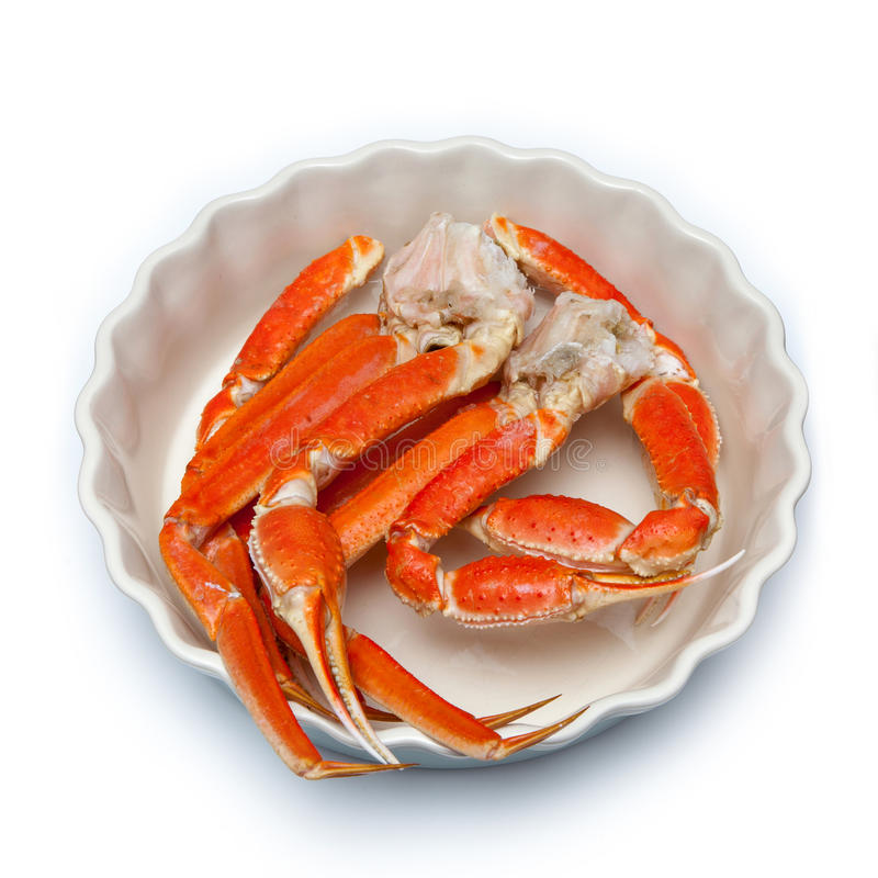 Snow crab (Chionoecetes opilio) or Tanner crab. stock photos