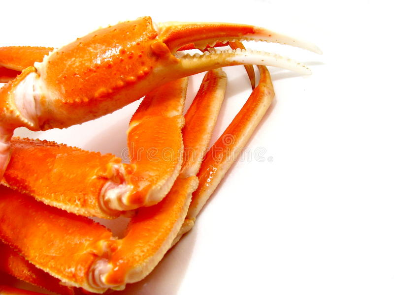 Snow Crab Legs royalty free stock photography