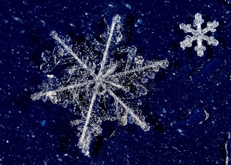 Snow crystals. From a cold winter stock photography