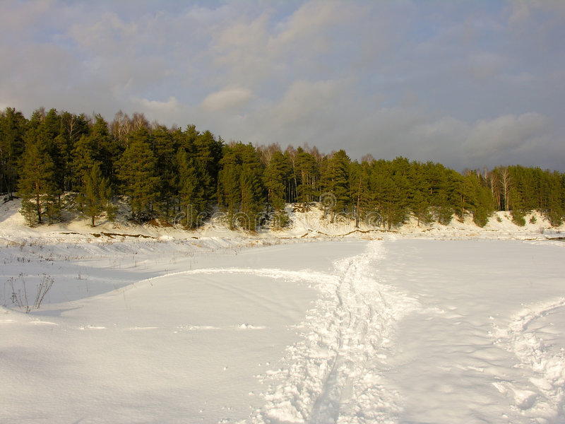snow drogowy sosny nieba obrazy royalty free