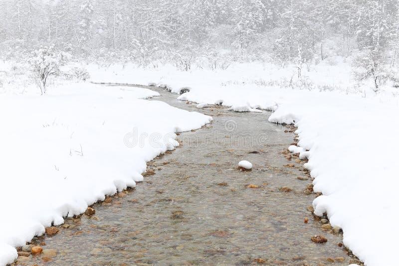 snow för sammansättningsnaturflod slappt arkivbild