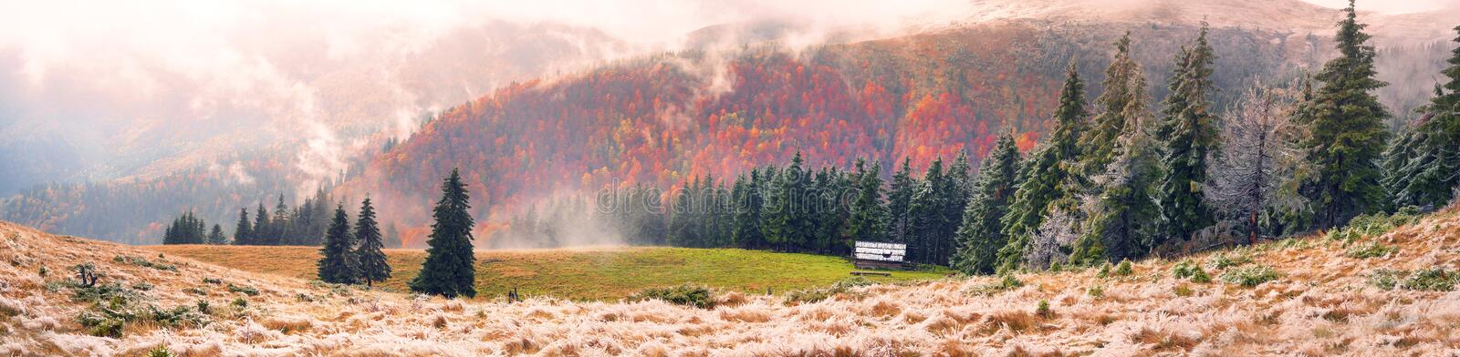 Snow fall. In the Carpathians, golden autumn often turns into snow, and then again warm, sunny days. Against the background of high mountain ranges of the forest stock photo
