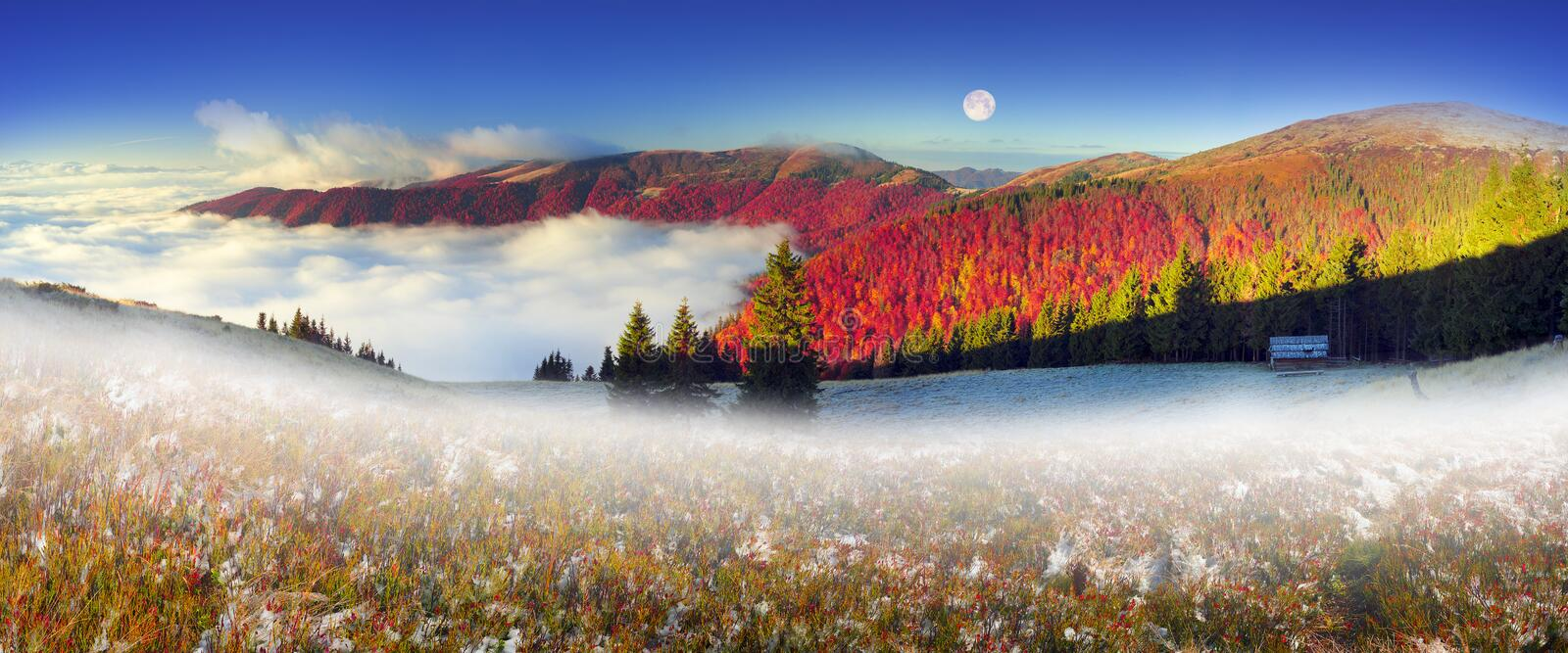 Snow fall. In the Carpathians, golden autumn often turns into snow, and then again warm, sunny days. Against the background of high mountain ranges of the forest royalty free stock images
