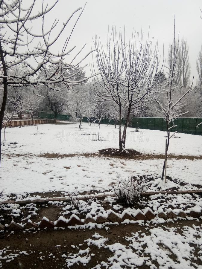 Snow fall in jammu india royalty free stock photography