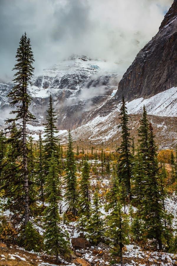 Snow fell in September stock images