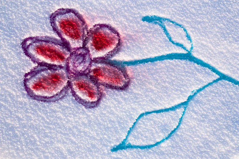 Snow flower stock photography