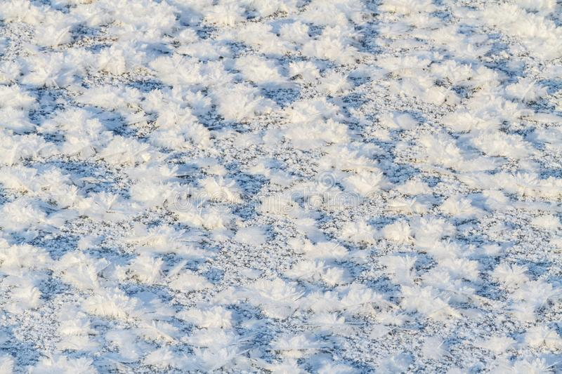 Snow flowers lie on the ice royalty free stock images