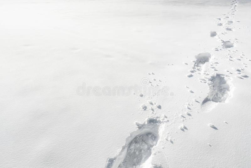 Snow footprints. Winter weather concept. Winter wandering scene royalty free stock image