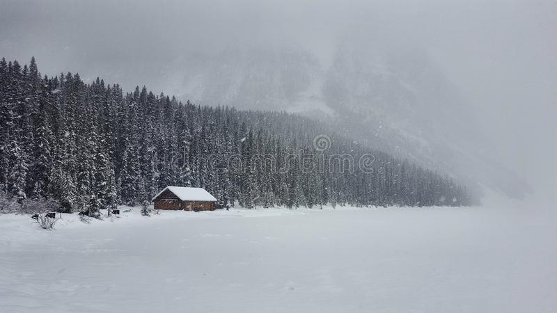 Snow Frozen wooden cabin, Louise Lake, Alberta Canada. Winter is coming in Canada ! Lake louise is best place to see snow ! big firs tree snow royalty free stock photo