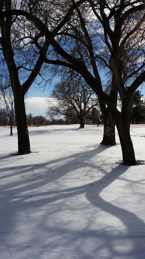 Snow in A Golf Course stock image