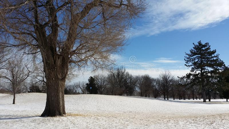 Snow in A Golf Course royalty free stock image