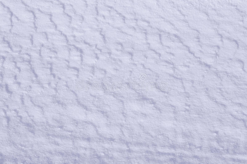 Download Snow on the ground stock photo. Image of decoration, photography - 49964836