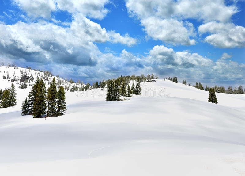 Snow In A High Mountains stock photo