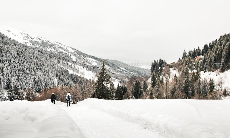 Snow Hike in Between Mountains and Alpine Trees. Snow hike with alpine trees in between ski stations in Trois Vallées, Meribel - southeast of France royalty free stock images