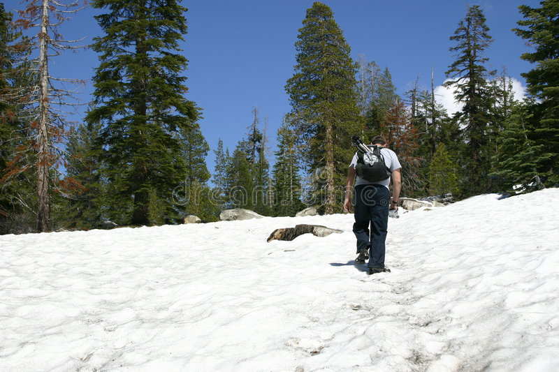 Download Snow Hiker - Sentinel Dome Stock Images - Image: 1306934