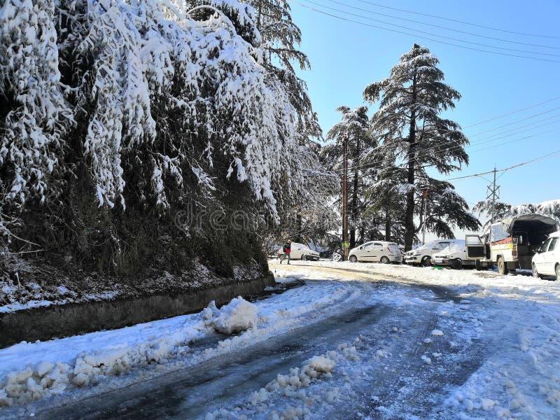 Snow in kufri stock photos