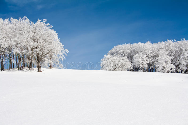 Download Snow landscape stock photo. Image of snow, track, nature - 28931562