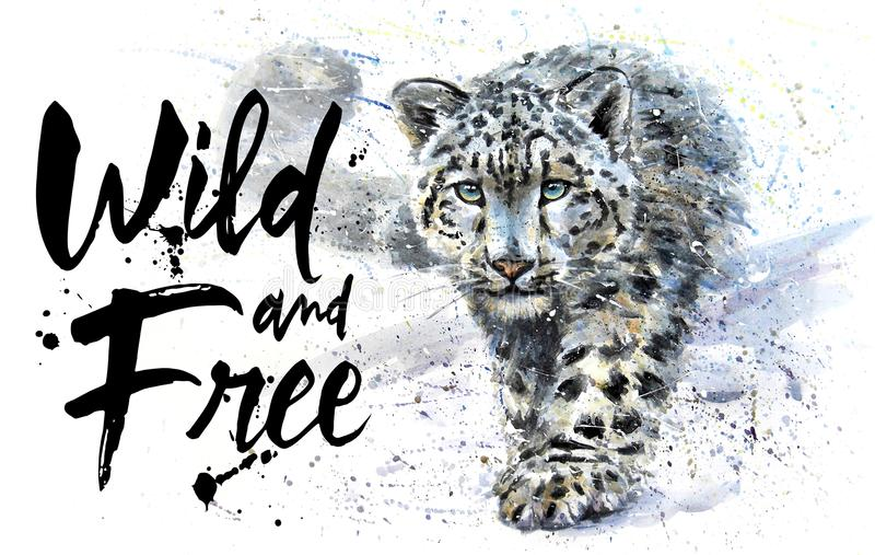 Snow leopard Wild and Free watercolor painting, animals predator, design of t-shirt, print, winter, king of mountains, wild ca stock illustration