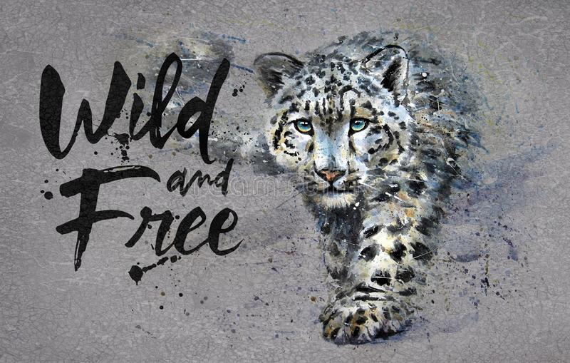 Snow leopard Wild and Free watercolor painting wit, animals predator, design of t-shirt, print, winter, king of mountains, wild ca. Snow leopard , design of t vector illustration