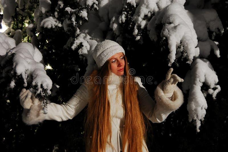 Download Snow Maiden stock photo. Image of caucasian, fairy, european - 16909790