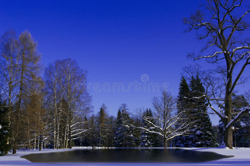 Download Snow Melting stock image. Image of cold, frost, beauty - 20463613
