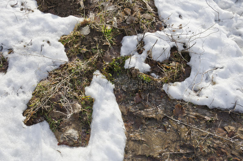 Download Snow Melting Stock Images - Image: 24226984
