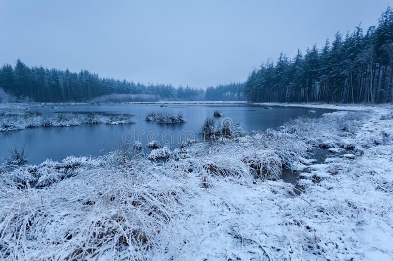 Snow Misty Morning On Lake Stock Image