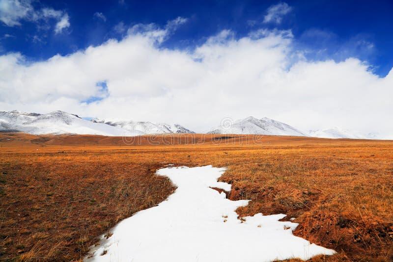 Snow mount and grassland stock photos