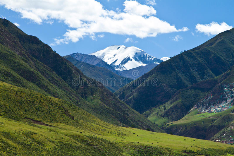 Download Snow mountain and pasture stock image. Image of landscape - 27050051
