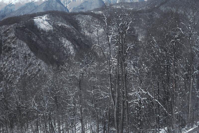 Snow mountains, blue sky winter ski resort. Snow mountains, blue sky winter ski royalty free stock photos