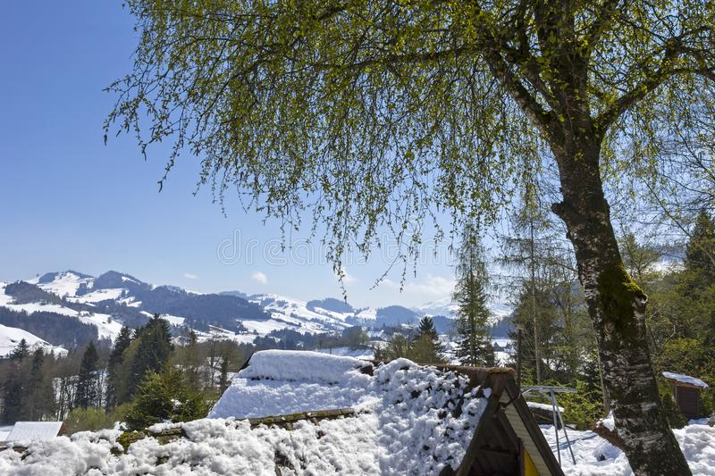 Snow in the mountains, but springtime is coming. In the European Alps, Appenzell, Switzerland stock image