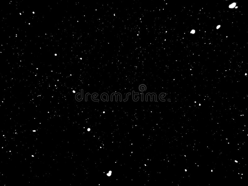 Snow in Night, Snow on black background royalty free stock photo