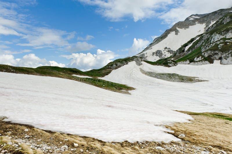 Snow och gräs fotografering för bildbyråer