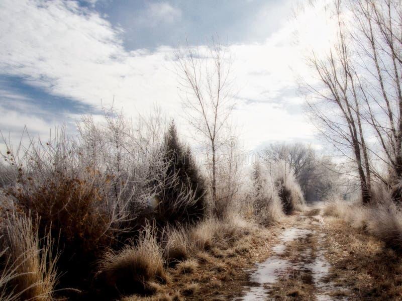 Snow på banan fotografering för bildbyråer