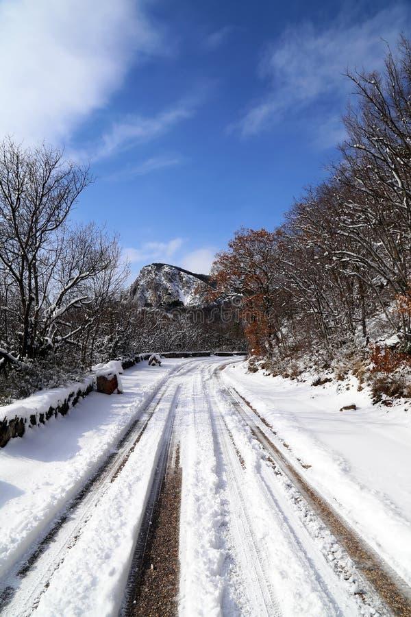 Snow på vägen royaltyfria foton