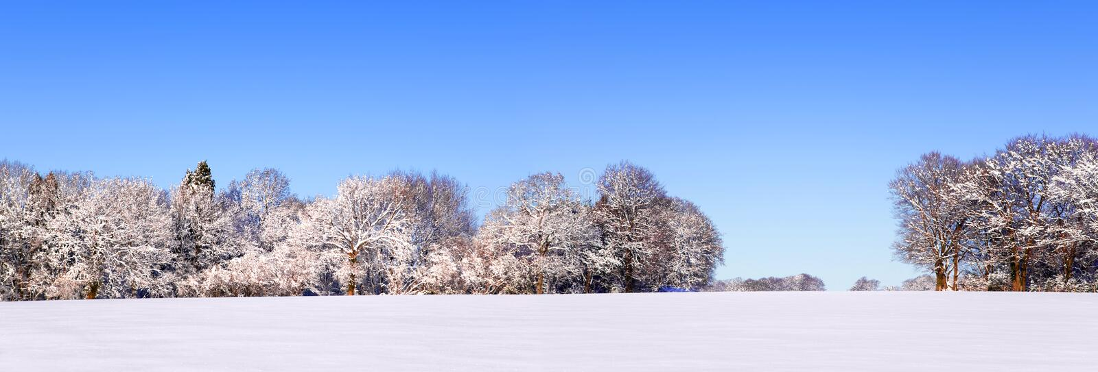 Snow panoramic landscape royalty free stock image