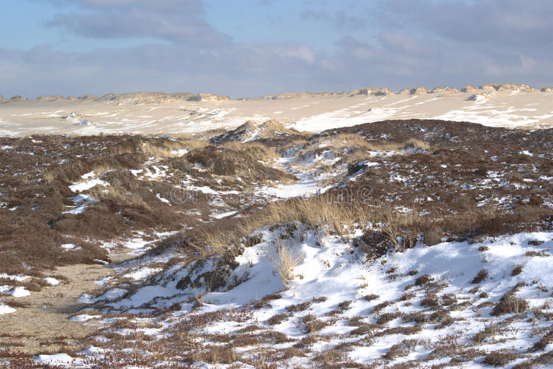 Snow patches in the dunes stock photos