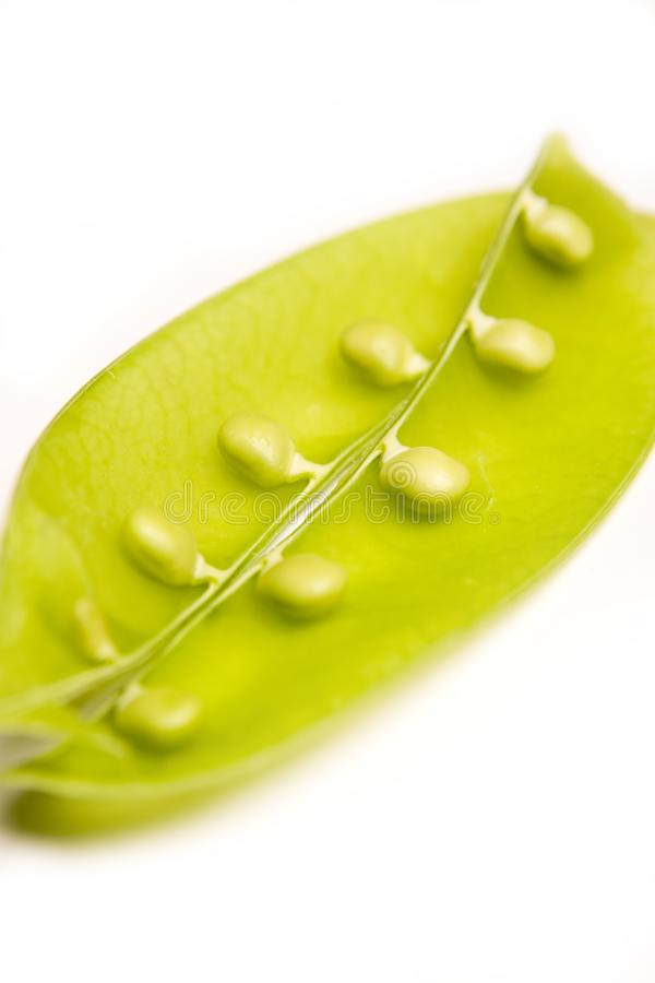 Snow pea stock images